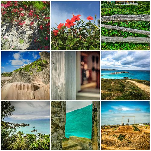 Bermuda1_500